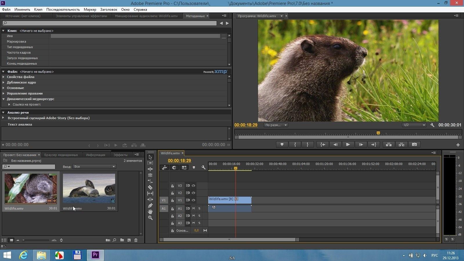 Adobe premiere торрент.